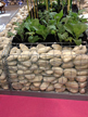 gabion-planter-for-vegetables