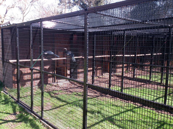 Cages for Birds in Zoo