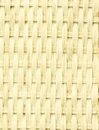 cane rattan mesh